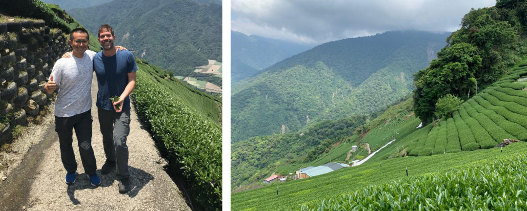A Focused Look: Cultivars & Terroir in Taiwan