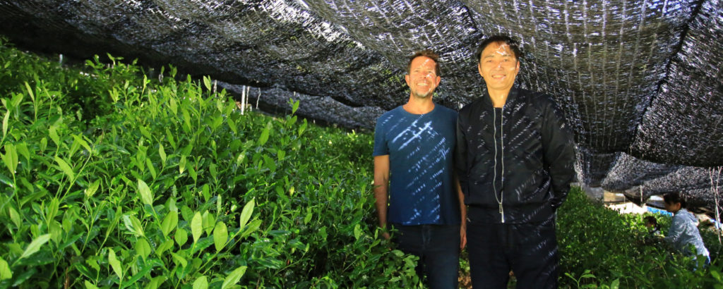 Makers Spotlight: Tsuji-san's Matcha