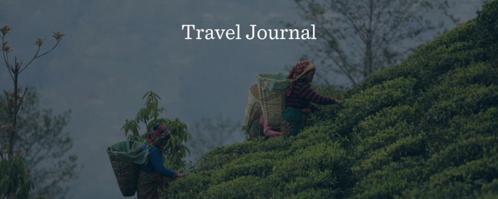 Tea Travel Journal - Rishi