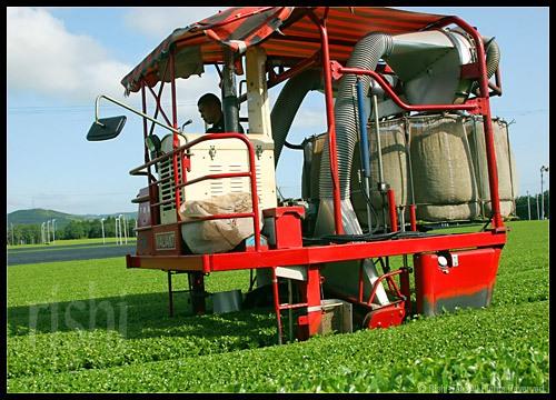 Japanse Tea Tractor