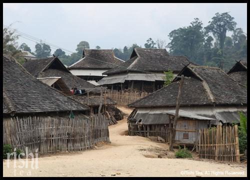 Village Life in the Remote Mannong & Manmai Tea Villages
