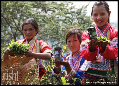 Fair Trade Connection