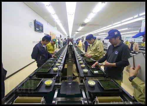 Kagoshima Tea Market