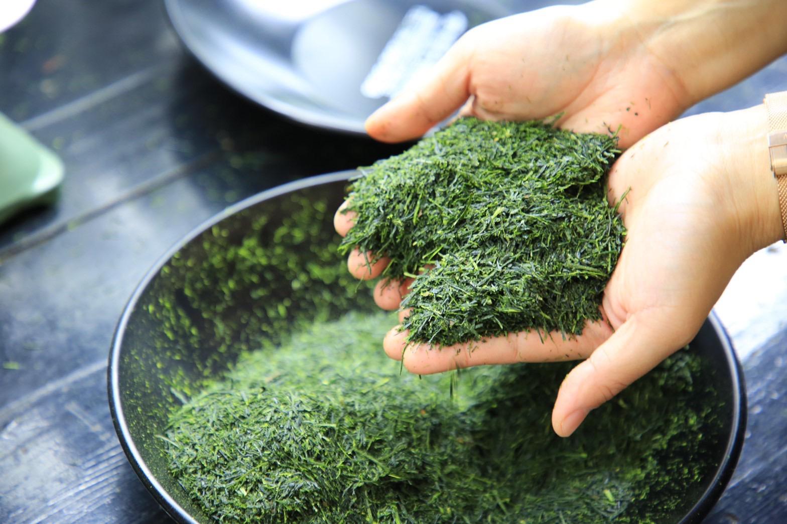 sencha-japan-hands-fresh