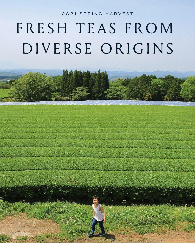Fresh Tea from Diverse Origins