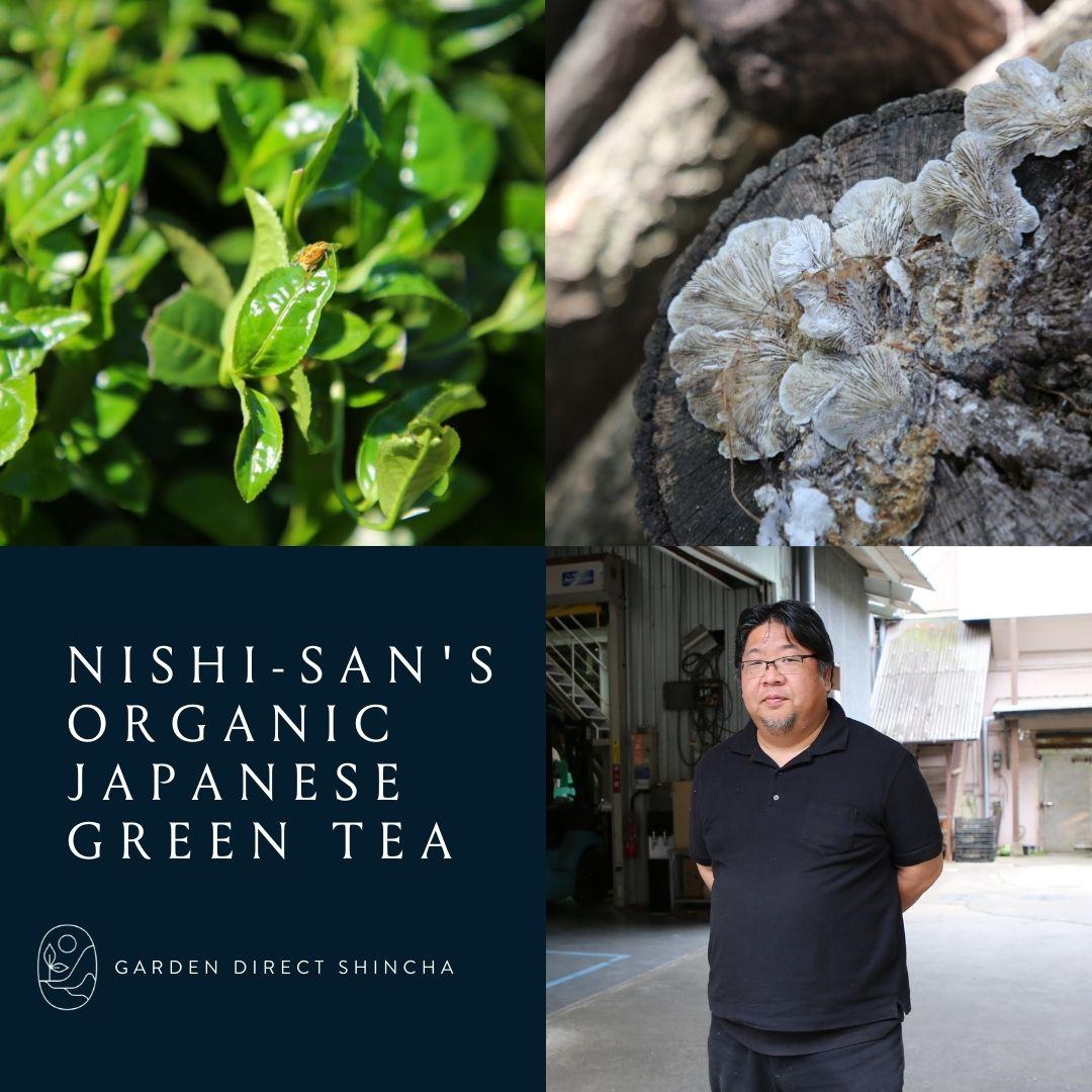 Nishi-Sans Organic Japanese Green Tea.  Garden Direct Shincha